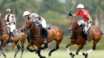 #6 Sports Event Considered the most important polo tournament in the United States, the U.S. Open Polo Championship is the pinnacle of the 26-goal tournaments held during the 16-week, Florida high-goal winter polo season. An estimated 10,000 people attend the annual competition. In 2017, International Polo Club Palm Beach in Wellington was awarded the championship through 2021. This year the tournament's final event was broadcast nationally on CBS. Next: April 20, 2018