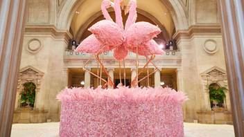 "New York With an exclusive guest list of 550 of the most famous names in Hollywood, fashion, music, and art, the Met Gala is one of the most coveted tickets of the year. In 2019, Lady Gaga, Alessandro Michele, Harry Styles, and Serena Williams joined Vogue editor in chief Anna Wintour as co-chairs of the event that introduced the museum's ""Camp: Notes on Fashion"" exhibition. The red carpet at this avant-garde event never disappoints, and this year was no exception, with notable looks like Naomi Campbell's flamingo-esque Valentino gown, Katy Perry's chandelier-inspired ensemble, and Gaga's four wardrobe changes. The gala raised more than $15 million to support the Costume Institute. Next: May 4, 2020 See more: See Inside This Year's Met Gala Filled with Feathers and Flamingos"