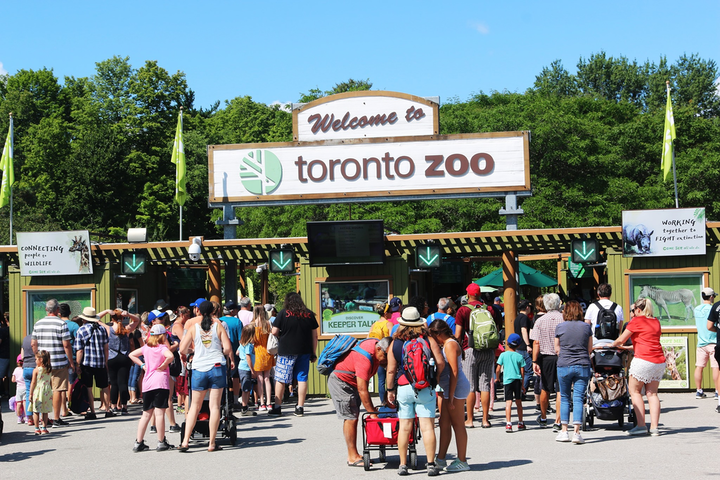 The Toronto Zoo has announced a new drive-through experience, which allows visitors to see the zoo from their cars while listening to an audio tour by zookeepers.